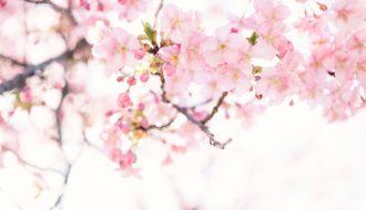 Les mauvaises habitudes à abandonner au printemps.