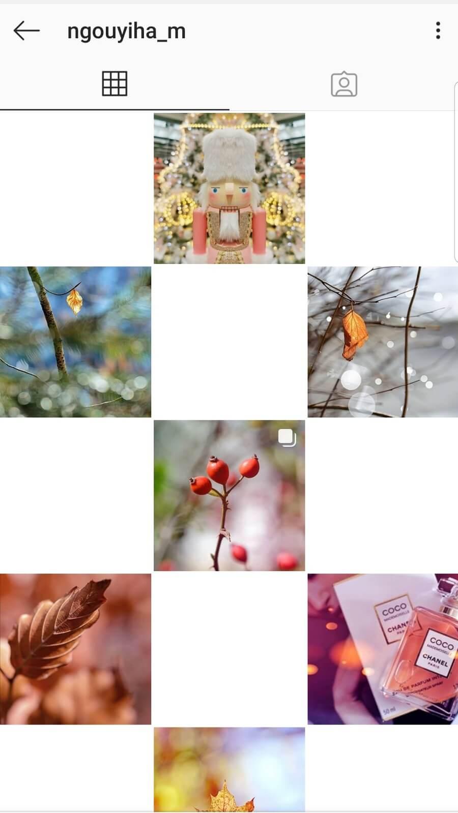 Feed Instagram dee Ngouyiha_m